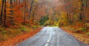 Roadtrip aux USA: voiture ou camping-car