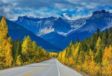 L'ultime road trip dans les Rocheuses | USA & Canada