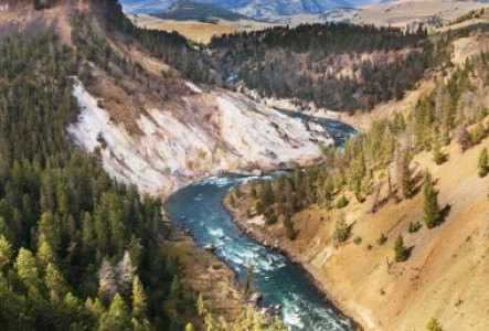 Parc Yellowstone : 5 incontournables à ne pas manquer [carte + photos]