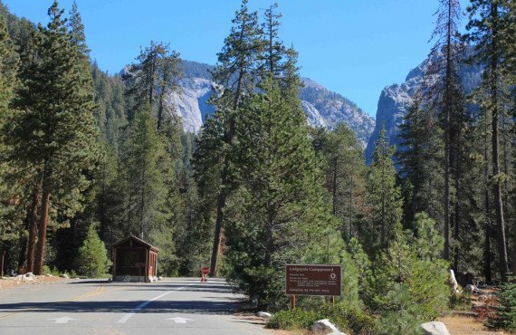 Camping Lodgepole