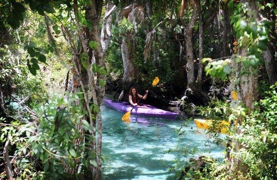 Balade en kayak, Crystal River, FL