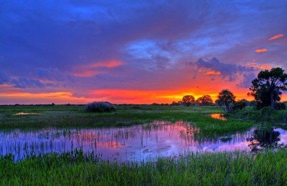 Parc des Everglades, Floride