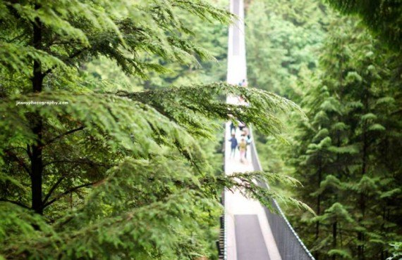 Pont suspendu de Capilano, Vancouver, BC