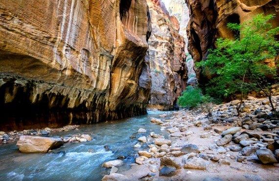 Camping Zion Canyon - Paysage à proximité
