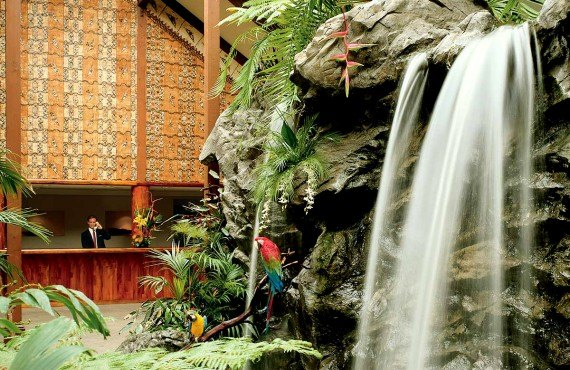 Chute d'eau de la serre amazonienne