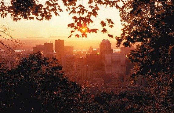 Centre-ville de Montréal vu du Mont-Royal