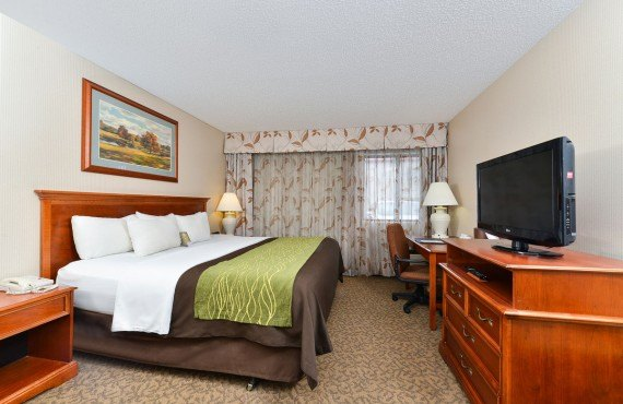 Comfort Inn Cody - Chambre