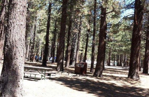 Mammoth RV Park - Emplacement pour tentes