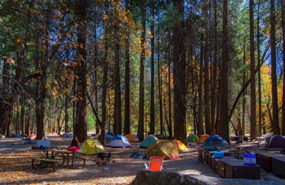 Camping du Park Yosemite - Emplacement pour tentes