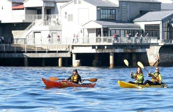 En Kayak dans la Baie de Monterey