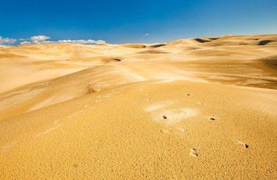 4-pismo-beach-dunes