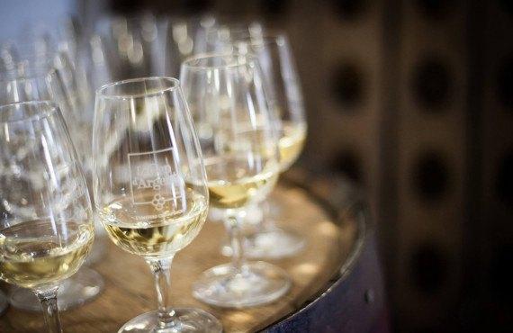 Découvrez les vins du Cep d'Argent