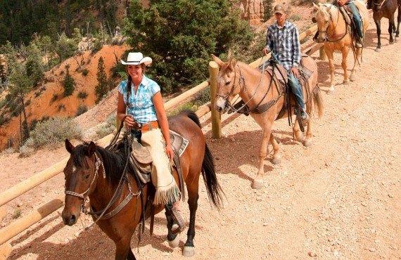 Randonnée à dos de cheval