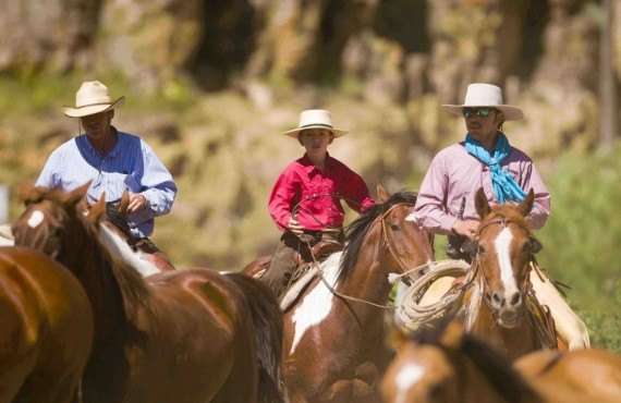Balade à cheval avec un Cowboy