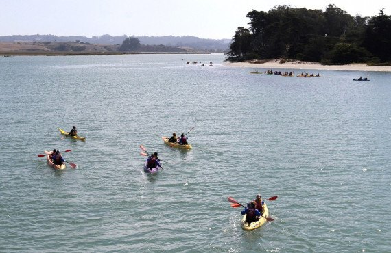 Randonnée en Kayak, Baie de Monterey
