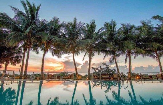Carillon-Miami-Palmiers