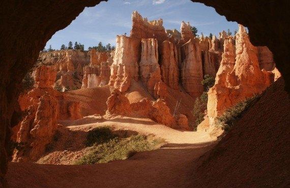 Les arches et tunels de la Queen's Garden trail