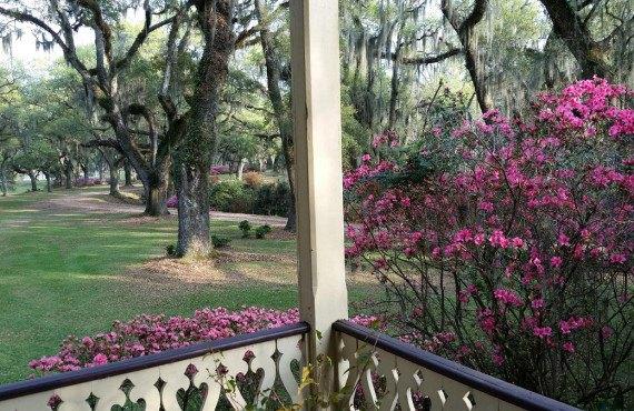 Le jardin sur la plantation
