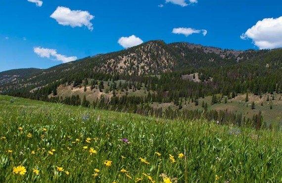 Les Montagnes du Montana