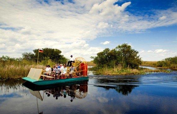 Croisière d'observation aux aligators