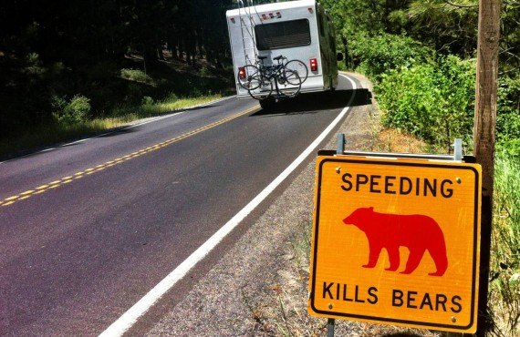 Les fameux panneaux routiers du parc Yosemite