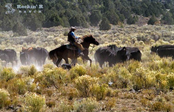 7-sejour-rockin-r-ranch-usa.jpg