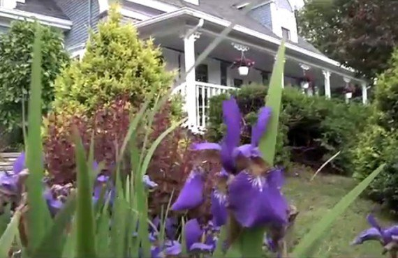 8-aux-jardins-champetres-jardin
