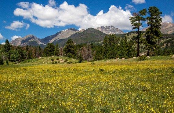 Camping Rocky Mountains - Vue à proximité