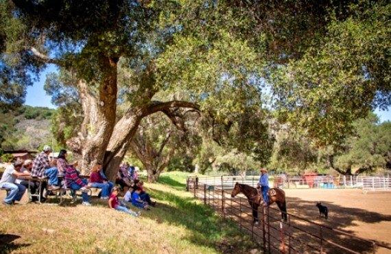 Camping Rancho Oso