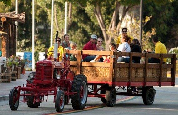 San Diego KOA - Activités sur le site