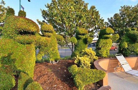Best Western Stovalls Inn - Le fameux Jardin