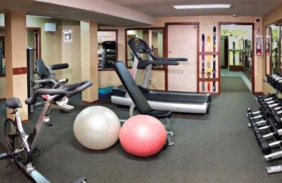 9-irwins-mountain-inn-gym