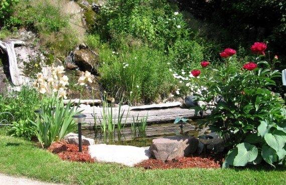 Gîte le Roupillon - Côté jardin