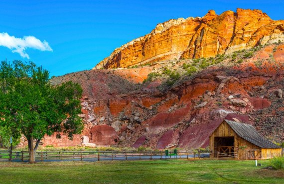 Barn of the Gifford Homestead  capitol reef
