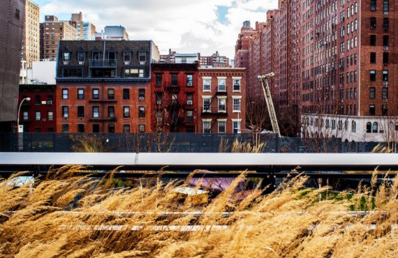 Parc High Line à New York