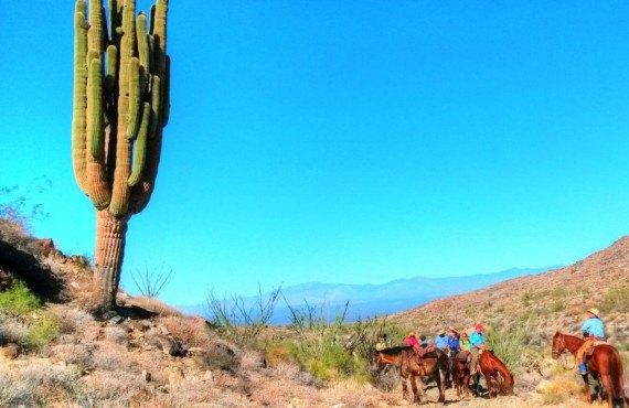 Paysage au Stagecoach Trails Guest Ranch