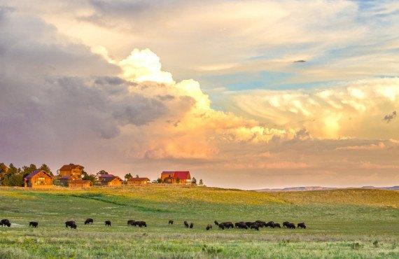 Zion Mountain Ranch au parc national de Zion
