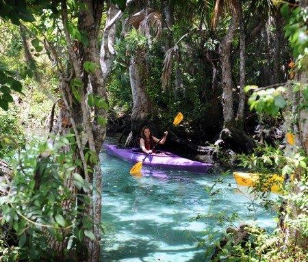 Crystal River - Balade en kayak