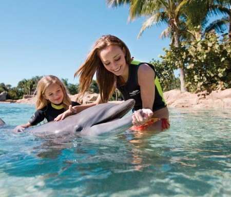 Nager avec les dauphins à Discovery Cove