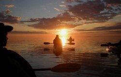 Kayak de mer avec les baleines, Tadoussac, Qc