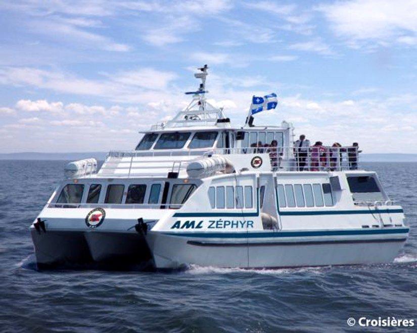 Safari aux baleines en catamaran - Tadoussac, QC