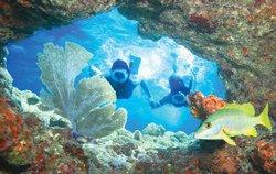 Plongée en apnée, Key West, FL