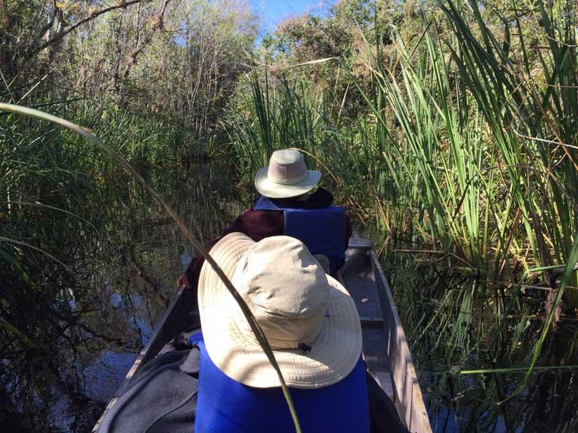 Alligator-Pole-Boat