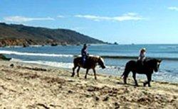 Équitation sur la plage - Santa Barbara