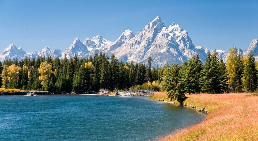 Paysage du parc national de Grand Teton