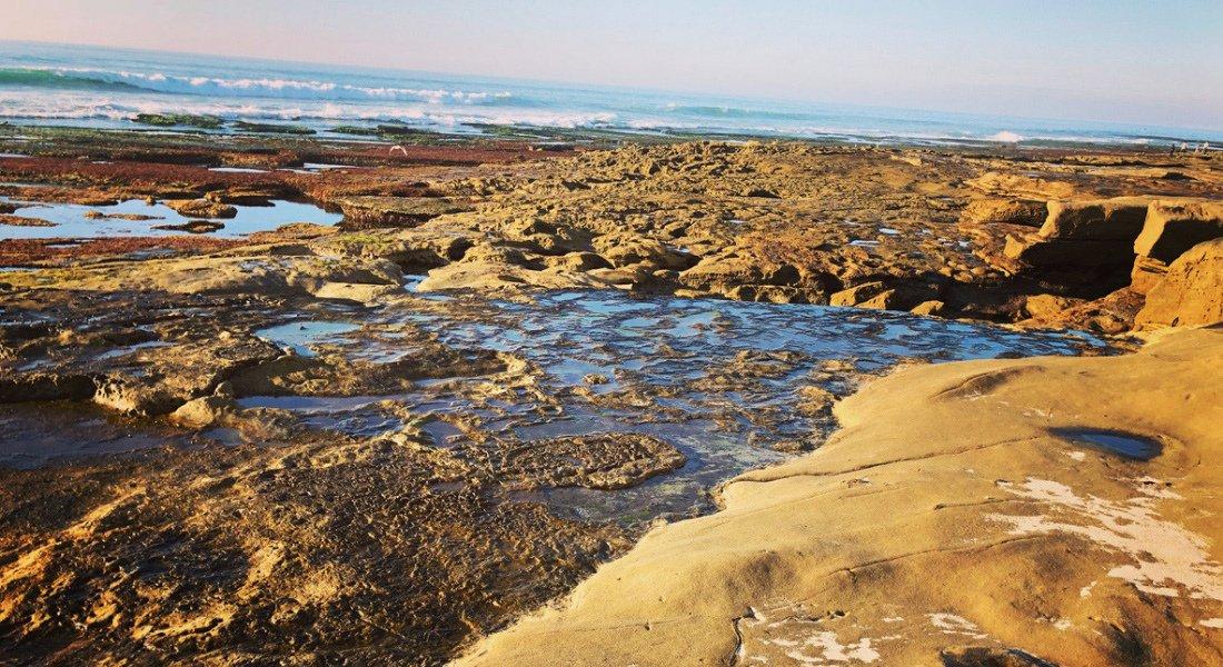 Tide Pools de San Diego