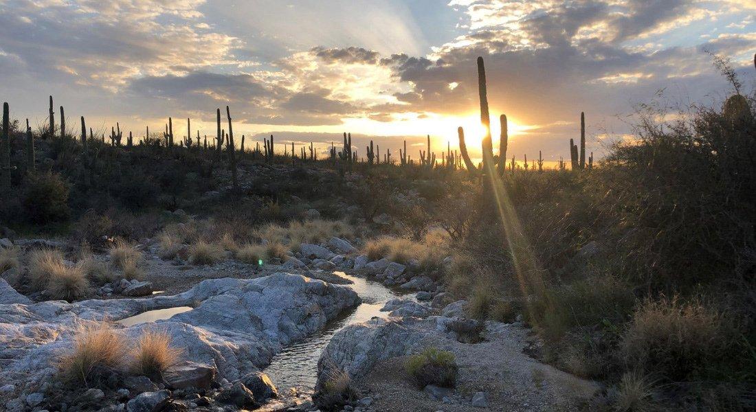 Paysage typiqye de l'Arizona