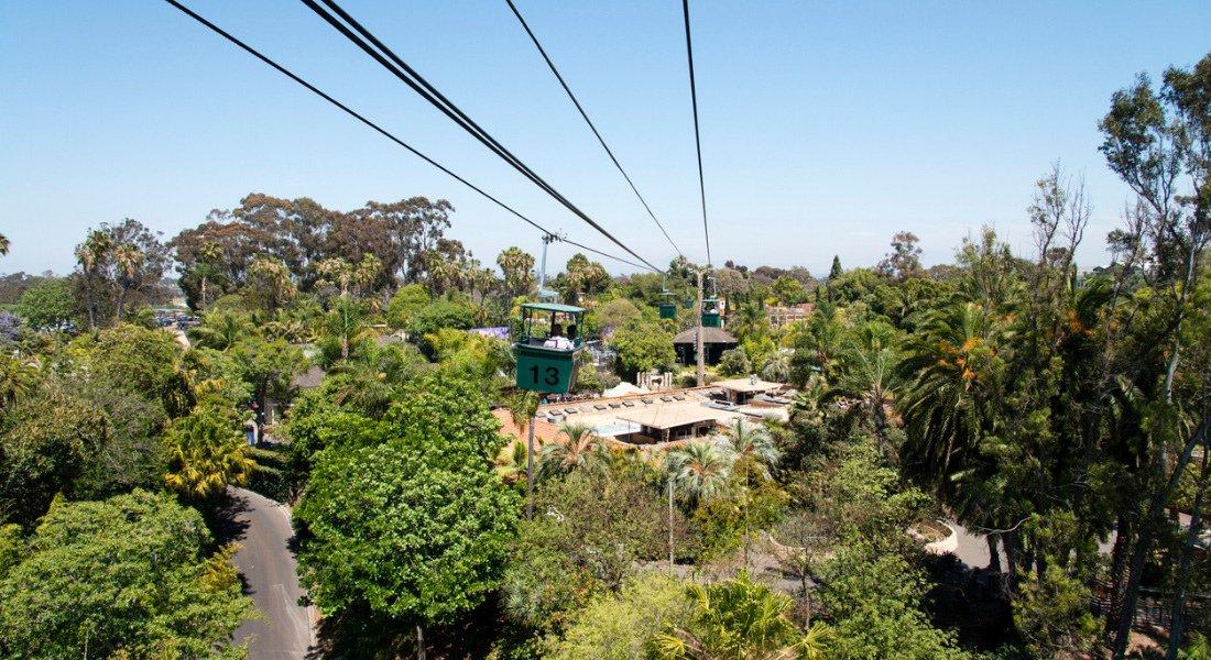 Zoo de San Diego