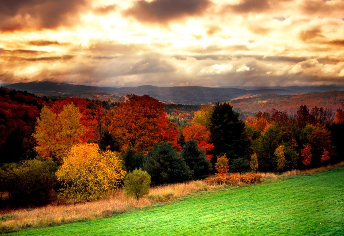 Green mountains en automne