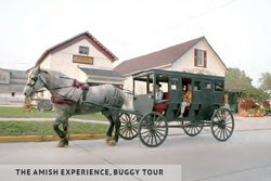 The Amish Experience, Buggy Tour